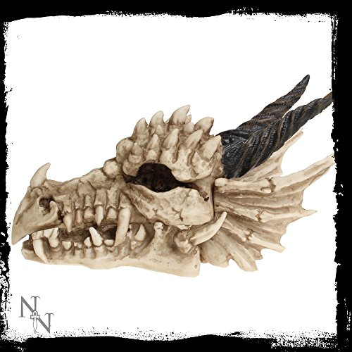 Nemesis-Now-Figura-decorativa-con-forma-de-calavera-de-dragn-0-0