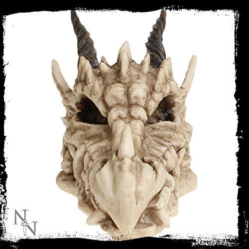 Nemesis-Now-Figura-decorativa-con-forma-de-calavera-de-dragn-0-3